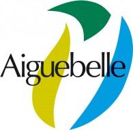 Logo club Val d'Arc – Aiguebelle