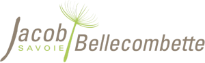 Logo club Jacob Bellecombette Volley Ball