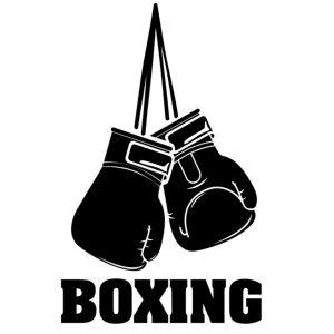 Logo Boxing Club du Bugey
